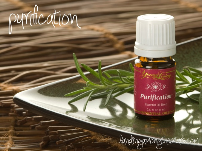 purificationheader